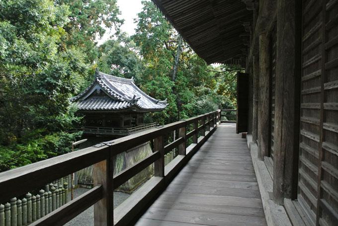 ichizyoji_13