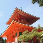 高野山へ大阪から電車で日帰り観光で行く紅葉の旅!