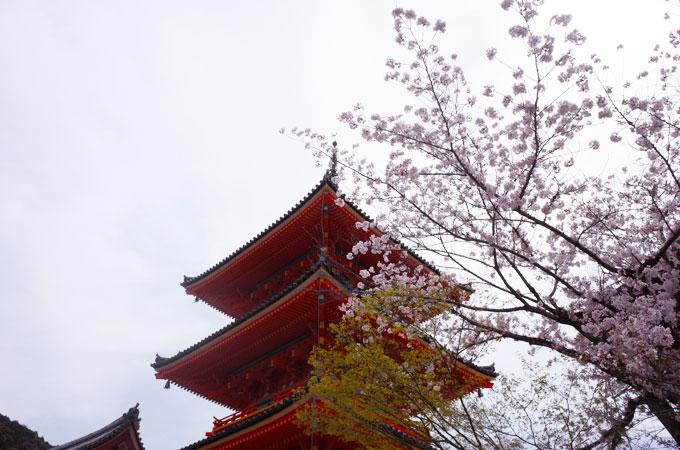 kyo_ki12