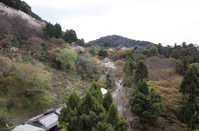 kyo_ki14