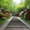 鞍馬寺~貴船神社へハイキング!京都で人気のパワースポットへ行ってきた!