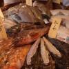 ベラビスタ尾道の食事は夕食の和食も朝食もどちらも絶品!