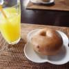 千光寺から猫の小道への行き方は?おすすめの穴場カフェとパン屋もご紹介!