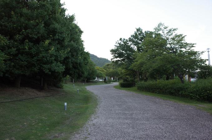 awa_su11