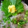 淡路島のグルメで人気のしらす丼が楽しめるおすすめレストラン6選!