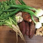 高知県越知町のふるさと納税で安心安全の無農薬野菜セットが届きました!