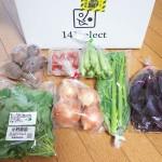 141セレクトから無農薬・無化学肥料の野菜の宅配お試しセットが来ました!