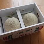 熊本県玉東町のふるさと納税返戻品「マスクメロン」が届きました!
