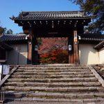京都岩倉実相院へ床もみじの紅葉を見に行ってきたよ!