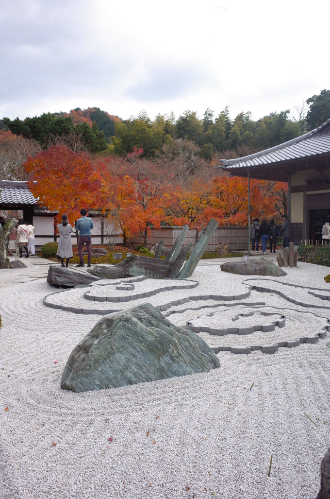 圓光寺 奔龍庭の枯山水と紅葉
