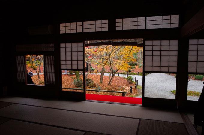 圓光寺 十牛之庭から見る紅葉の絶景
