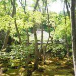 祇王寺の御朱印や行き方は?苔と新緑の青もみじが絶景の嵐山の穴場スポット!