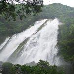 屋久島大川の滝へのアクセスは?バスでも行ける?雨の後の水量は大迫力!