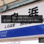大阪から白浜への行き方で安い&早いおすすめのアクセス方法は?【電車とバスを徹底比較!】