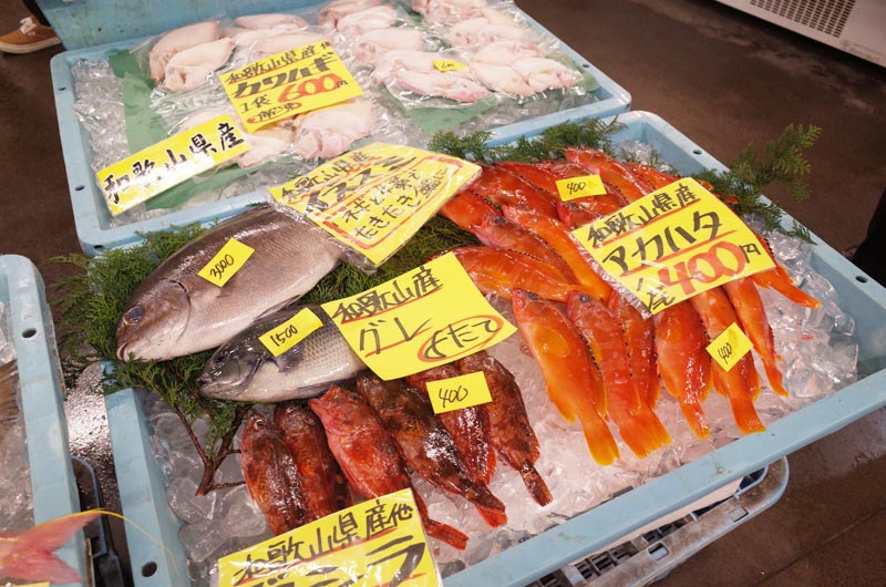 とれとれ市場の鮮魚