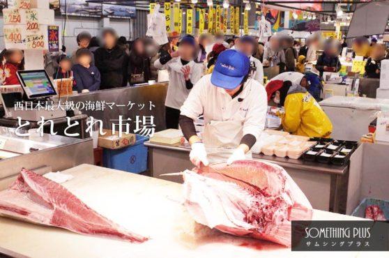 とれとれ市場は何時まで?マグロの解体ショーの時間は?海鮮が絶品のおすすめ観光スポット!