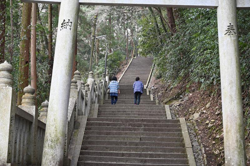 こんぴらさんの階段